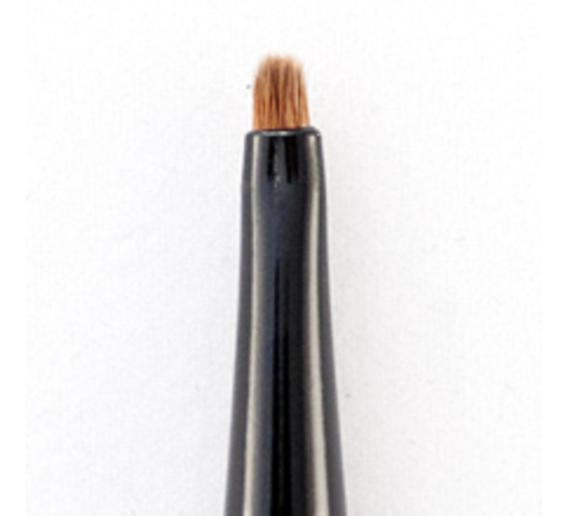 precision eyeliner brush.jpg